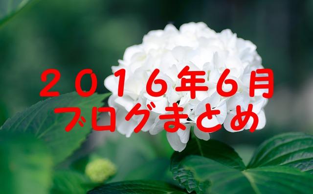 2016.6ブログまとめ by pixabay