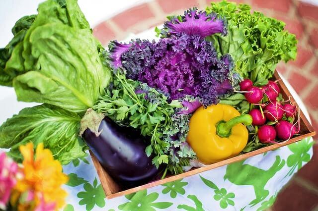 115歳、野菜