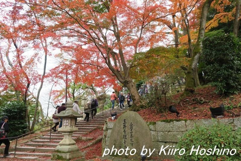 三井寺、観音堂階段