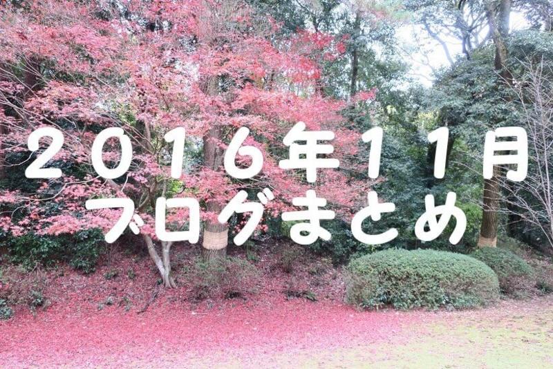 2016.11ブログまとめ