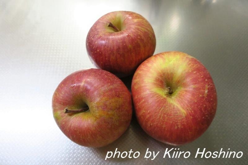 ふるさと納税・岐阜池田町、りんご