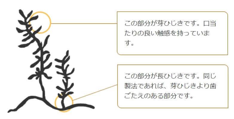 ひじき図 byくらこんサイト