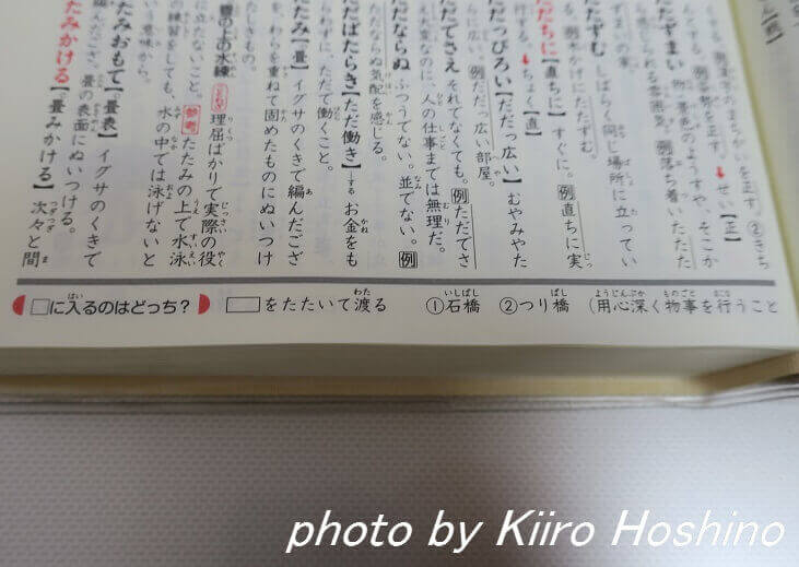 国語辞典、欄外