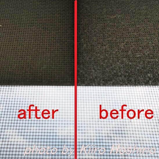 網戸掃除before,after