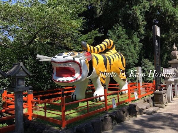 f:id:kiiroihoshi:20180721101202j:plain