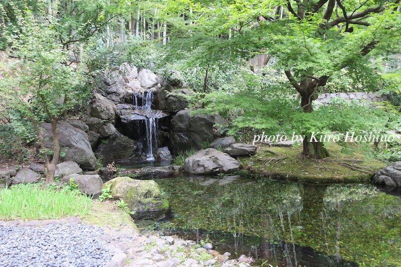 山崎蒸溜所、山崎の水