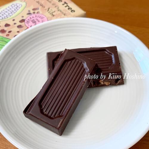 ピープルツリーチョコレート2019、カカオニブ中身