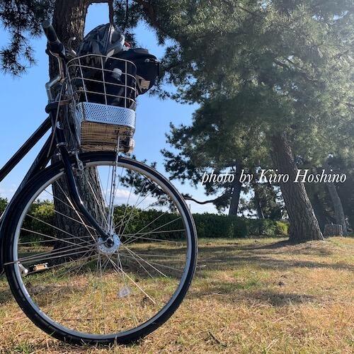 捨てたもの記録202103、自転車